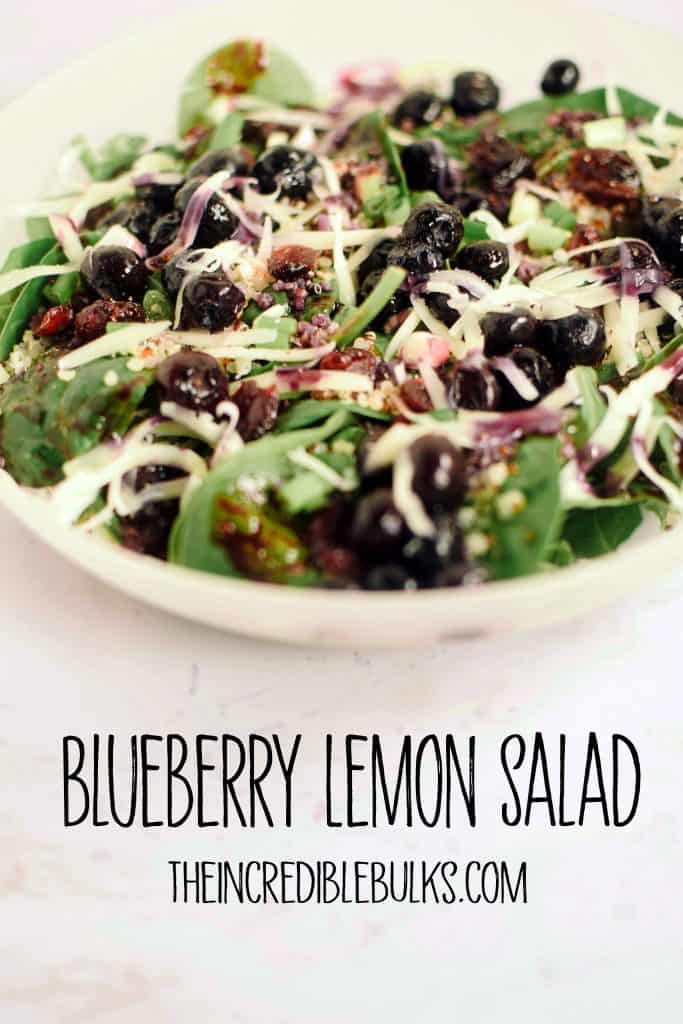 A close up photo of Blueberry Lemon Salad featuring quinoa, spinach, swiss cheese, green onions and dried cranberries.  theIncredibleBulks.com