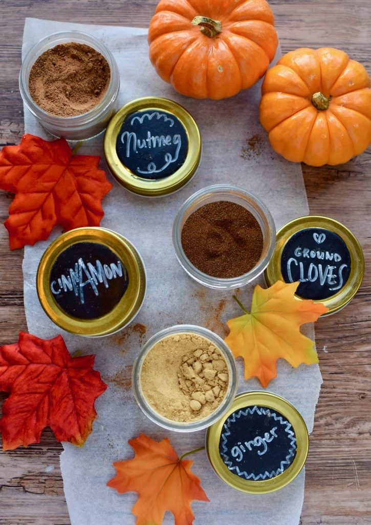 Jars of nutmeg, cloves, cinnamon and ginger are arranged on a table with fall leaves and pumpkins